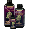 Bonsai Focus 100ml