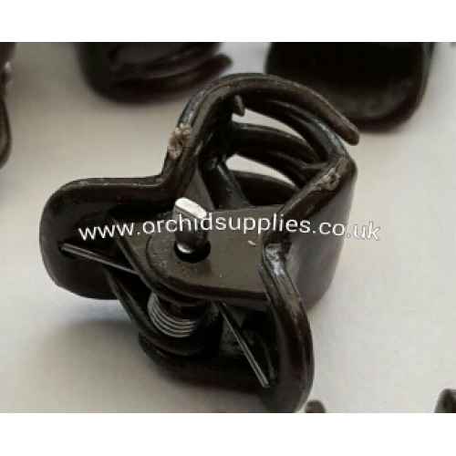 Orchid Clips Size S Brown X10