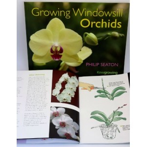 Growing Windowsill Orchids-60 pages-Books & CD-6.99