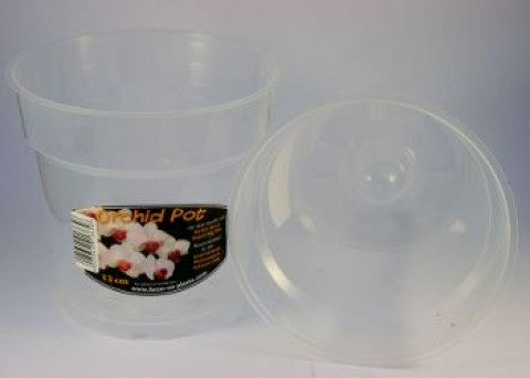 13 cm Clear Air Cone Pot X 1