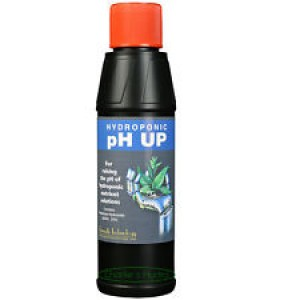 PH up control solution 250 ml-Semi-Hydro-Hydroponic products-4.50